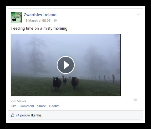 Using vine videos on Facebook
